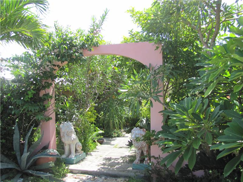 Professional Designed, Lush Tropical Plantings